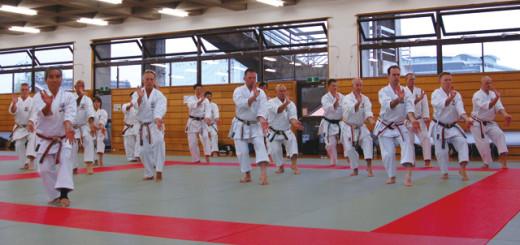 sports_karate_01