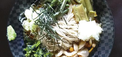 ぶっかけ山菜そば(900円)